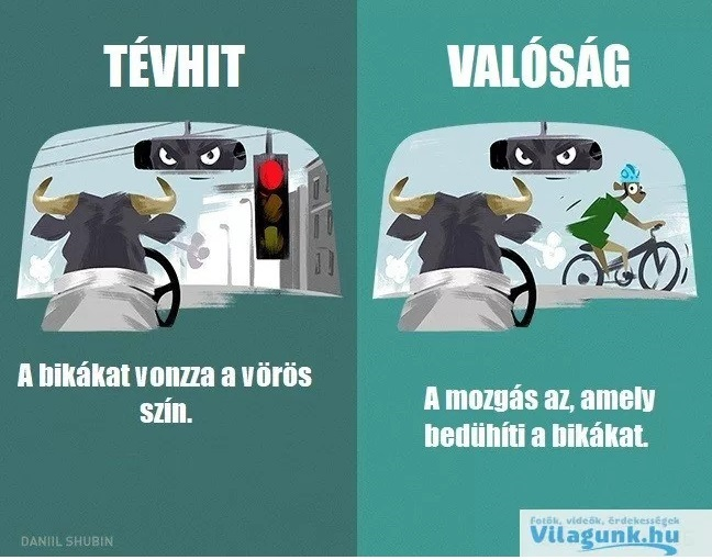 tevhit_bika