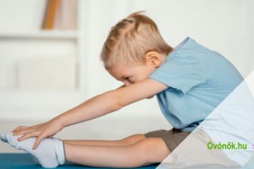Egészségfejlesztési program az óvodákban - A mindennapos testnevelés, testmozgás